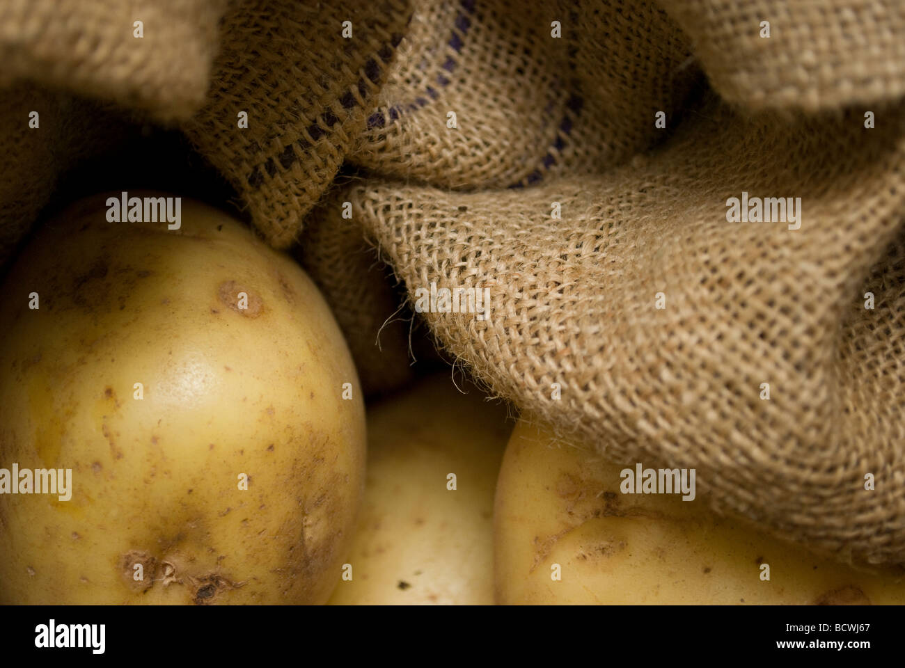 Potatoes being kept in hessian in a basket. - Stock Image