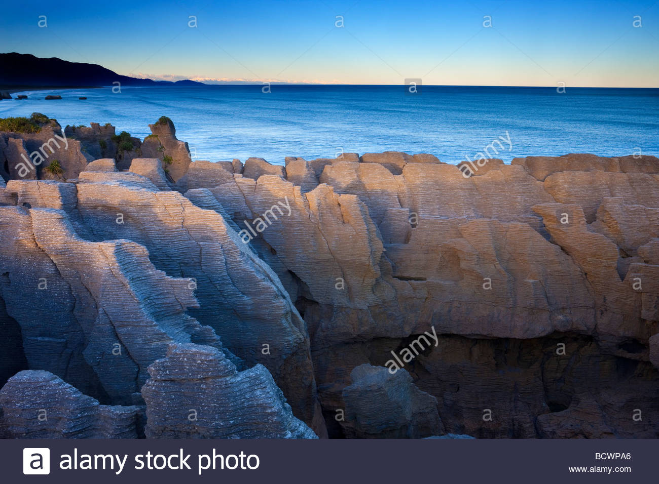 The Pancake Rocks, located in Punakaiki on the West Coast of New Zealand, are layered columns of limestone. - Stock Image