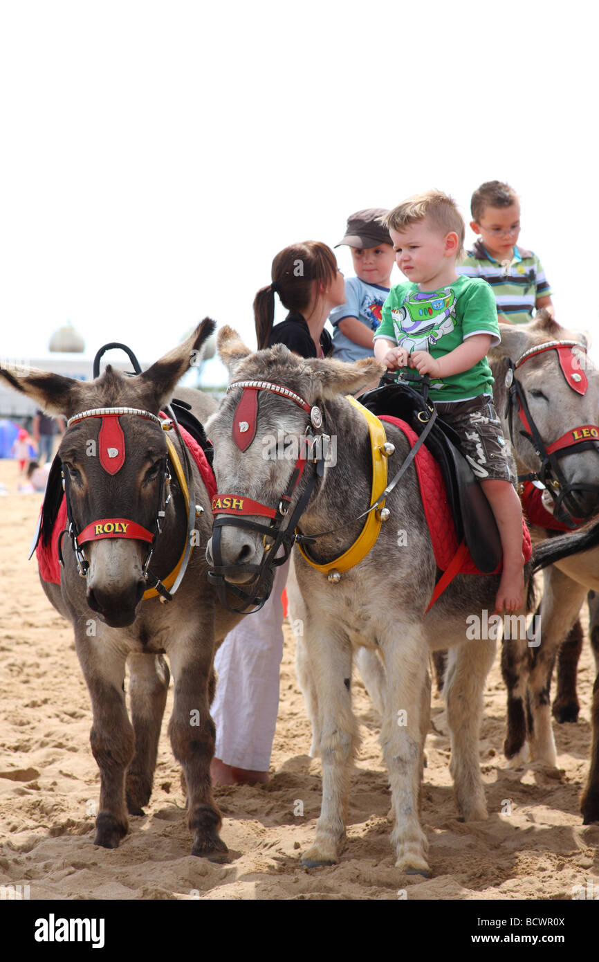 Donkey rides on Skegness beach, Lincolnshire, England, U.K. Stock Photo