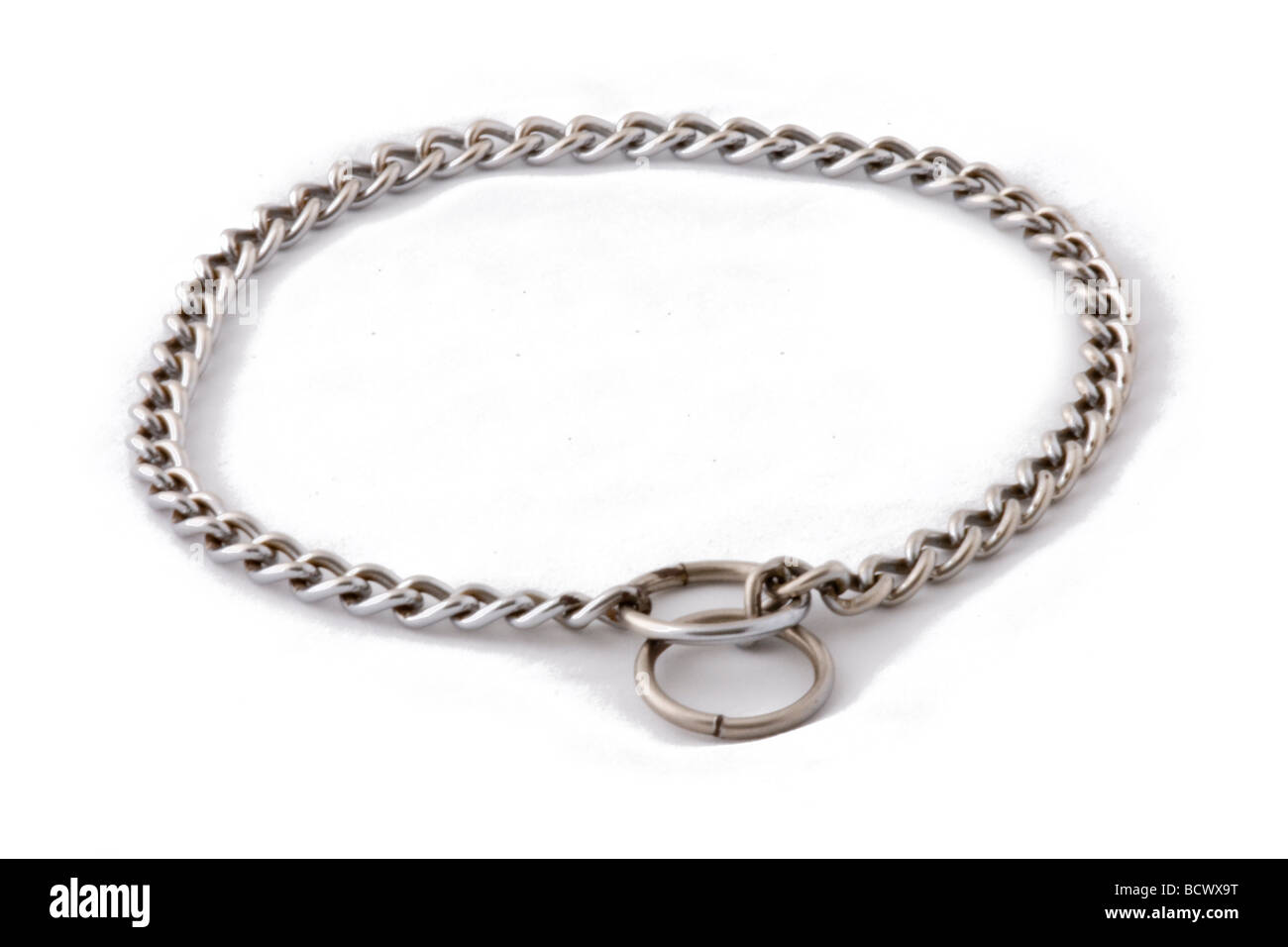 Check chain for dog training - Stock Image