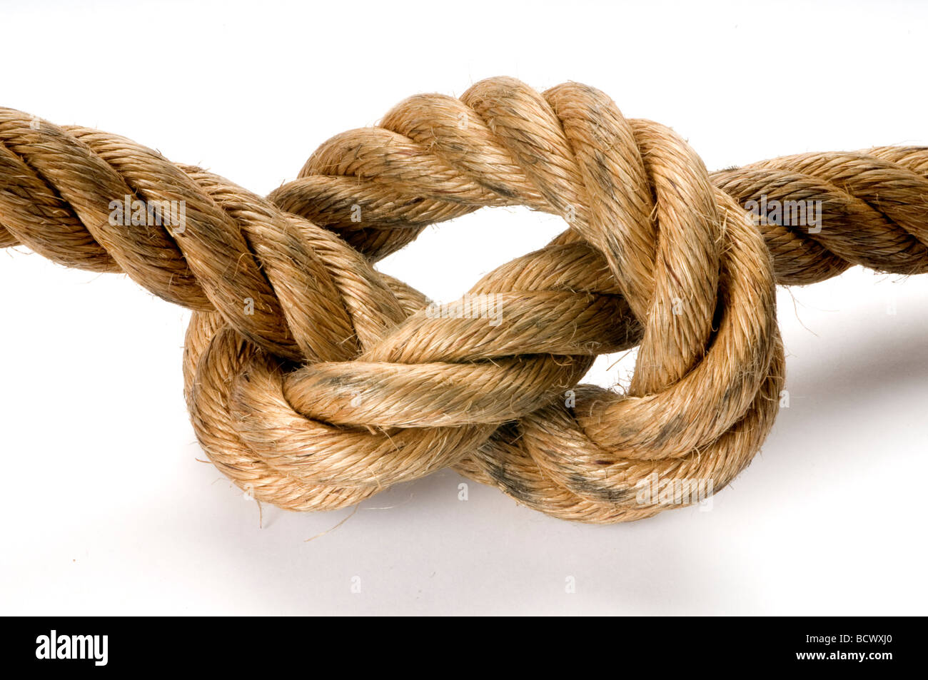 rope tied in knot on white. - Stock Image