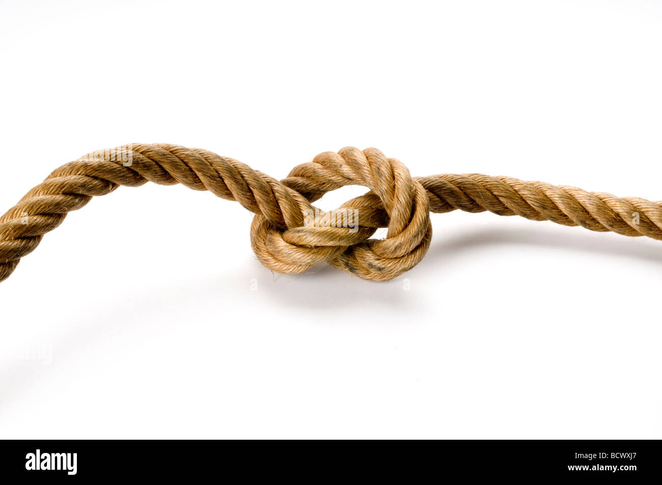 rope knot on white - Stock Image