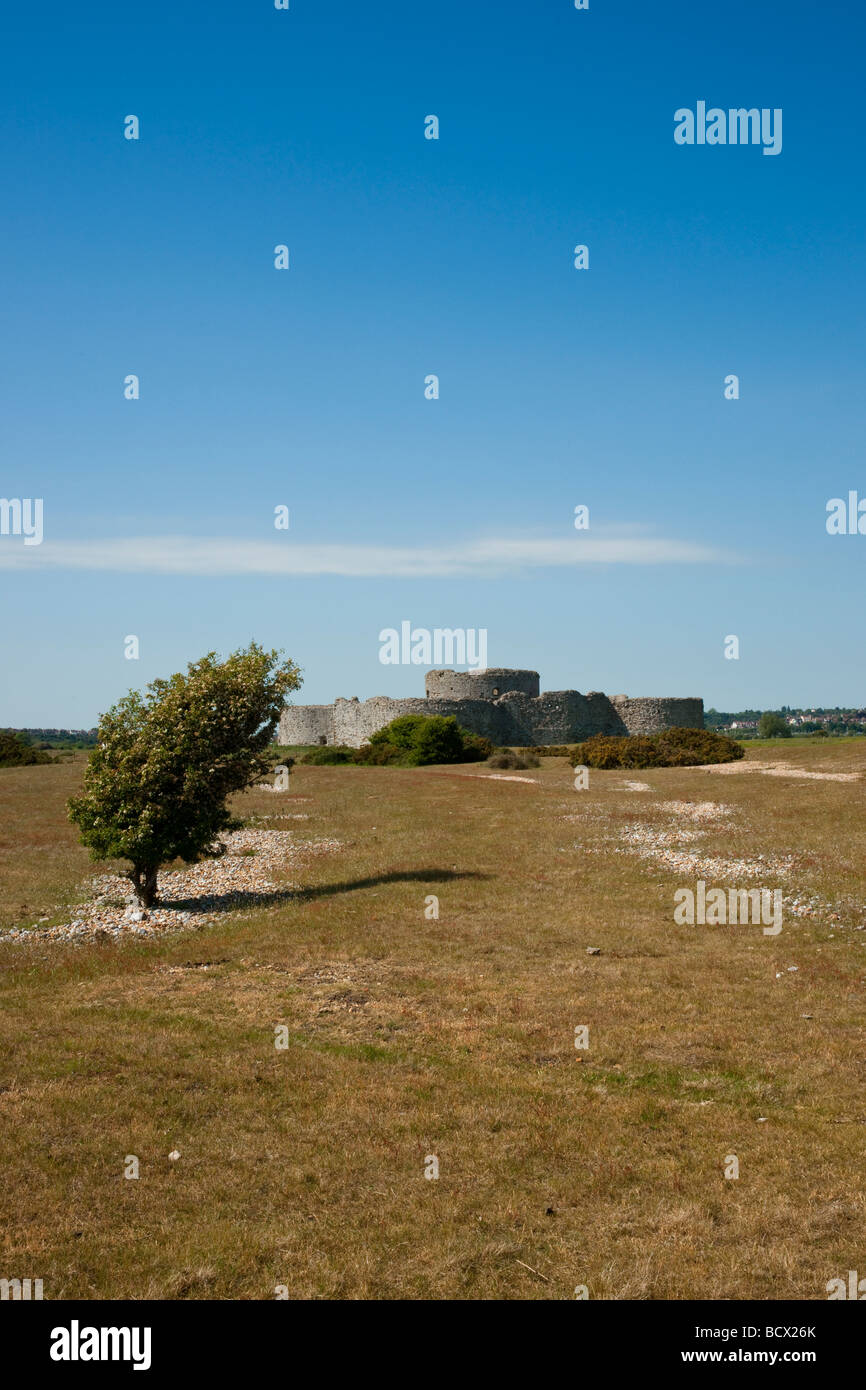 Ruined castle with bent tree in the foreground against a clear blue sky - Stock Image