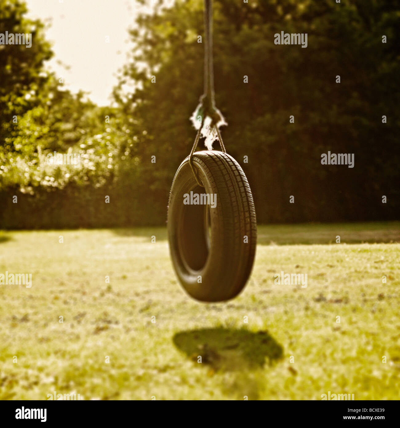 Tyre Swing with minimal focus on the top of the tyre and a nostalgic feel. - Stock Image