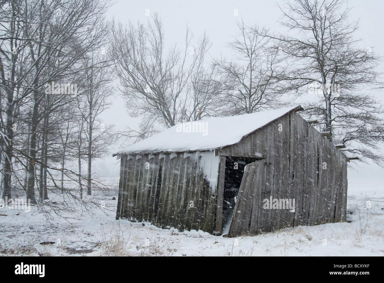 Old Rustic Barn Winter Snow Scene In Arkansas