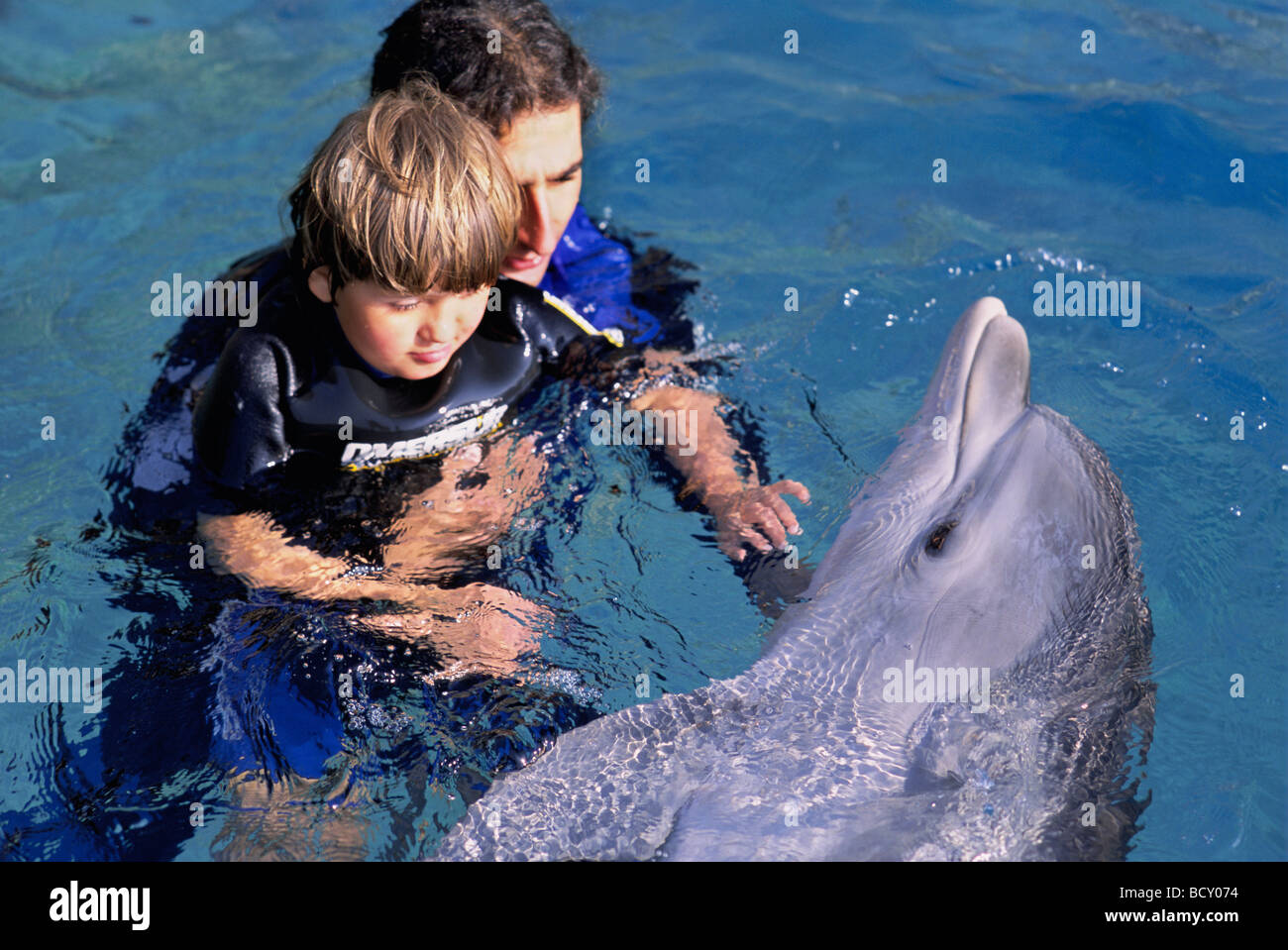 Autistic child receives therapy with dolphin trainer and Bottlenose Dolphin Stock Photo