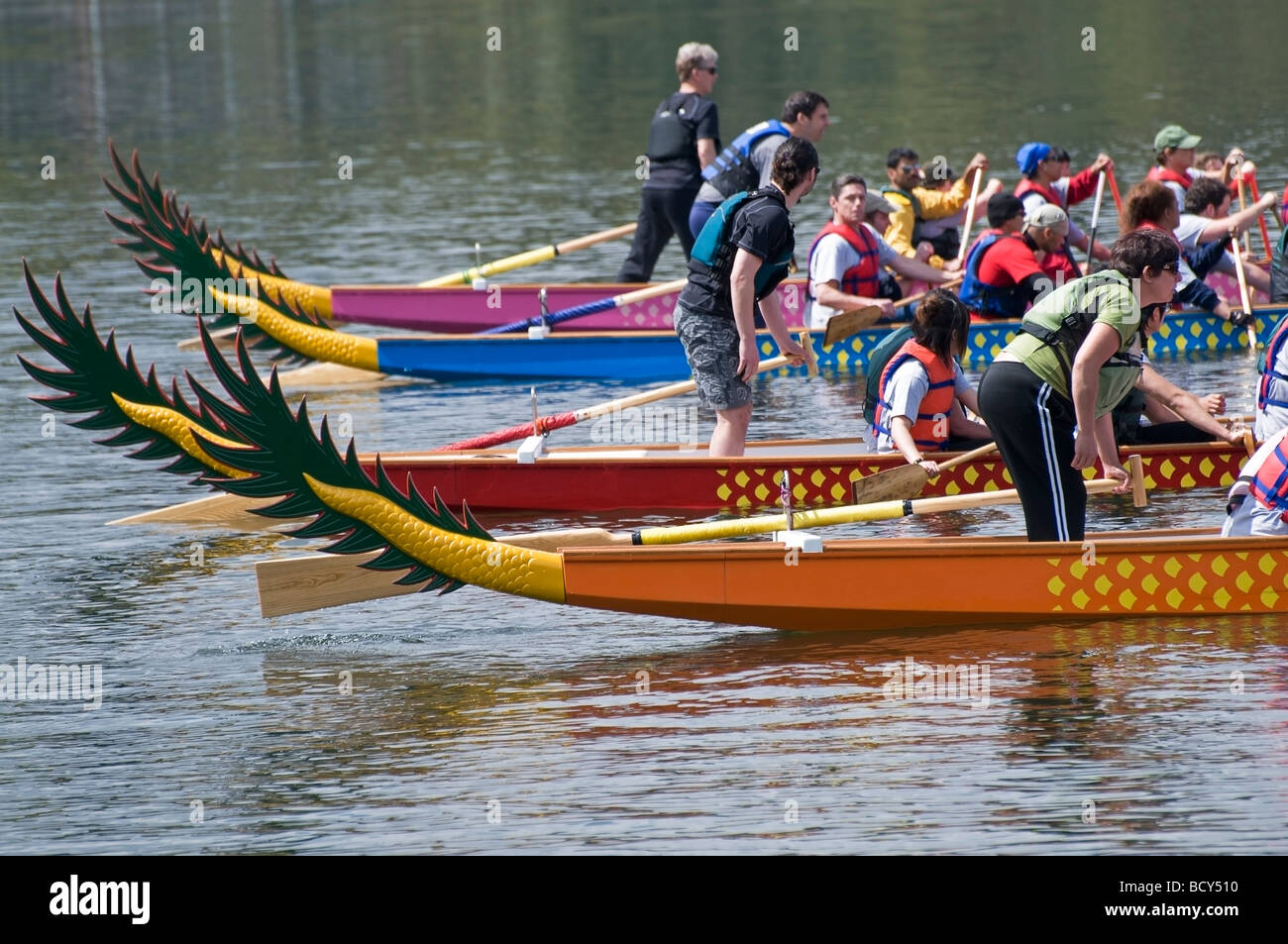 Back side view of a lineup of Dragon Boats and their athletes awaiting the starting signal for the beginning of - Stock Image