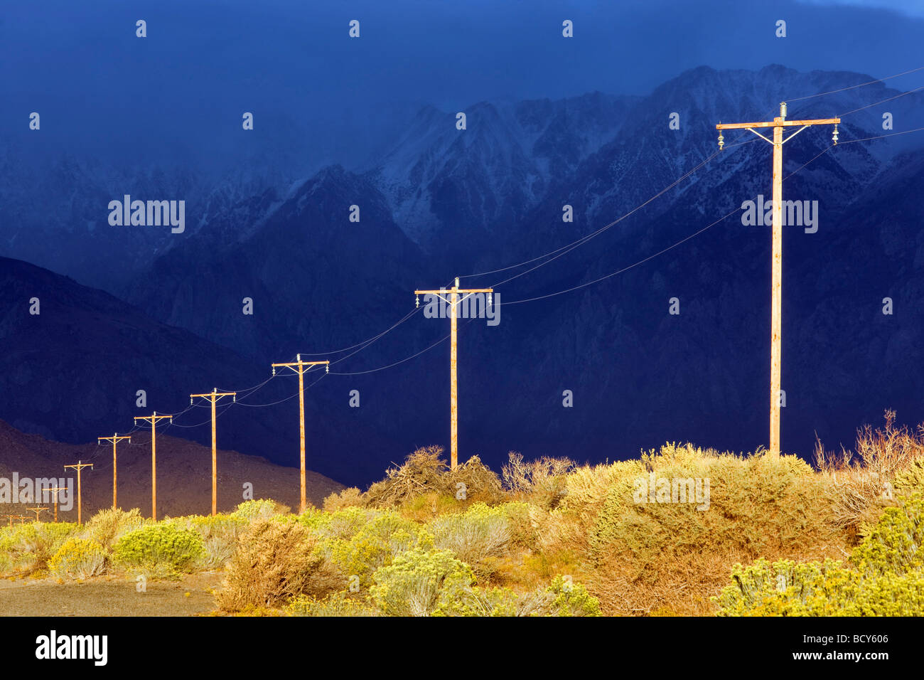 Power lines with dramatic storm light  Bishop California - Stock Image
