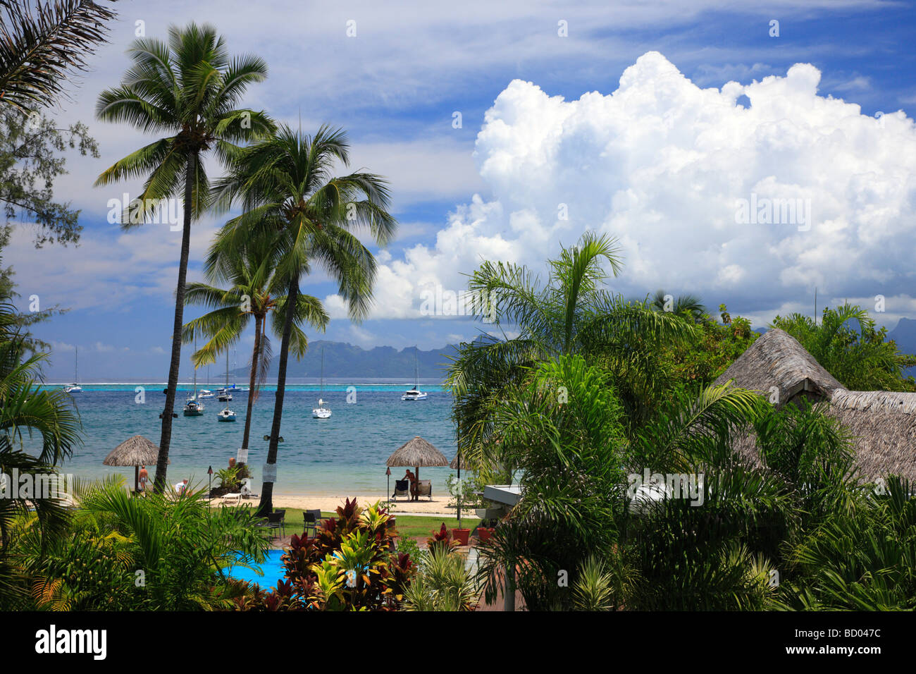 Tahiti French Polynesia - Stock Image