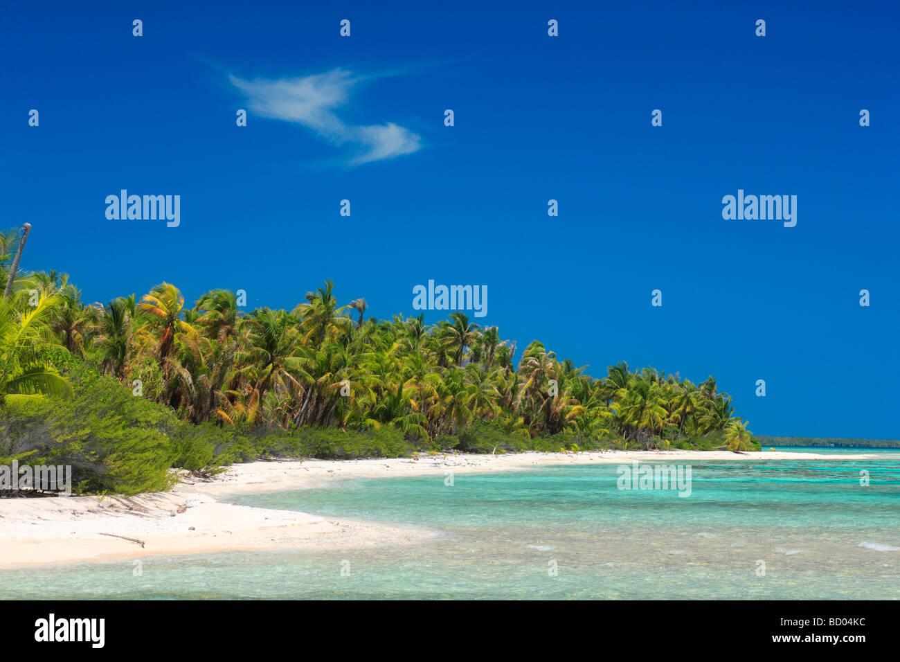 Rangiroa coastline, Tuamotu Archipelago, French Polynesia - Stock Image