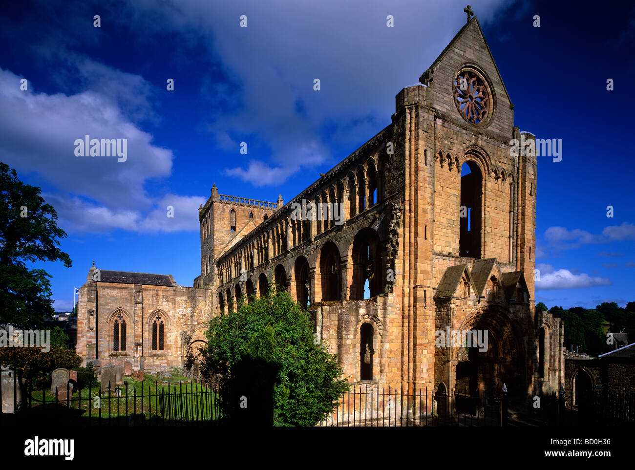 A late summer evening view of Jedburgh Abbey, Jedburgh, Scottish Borders - Stock Image