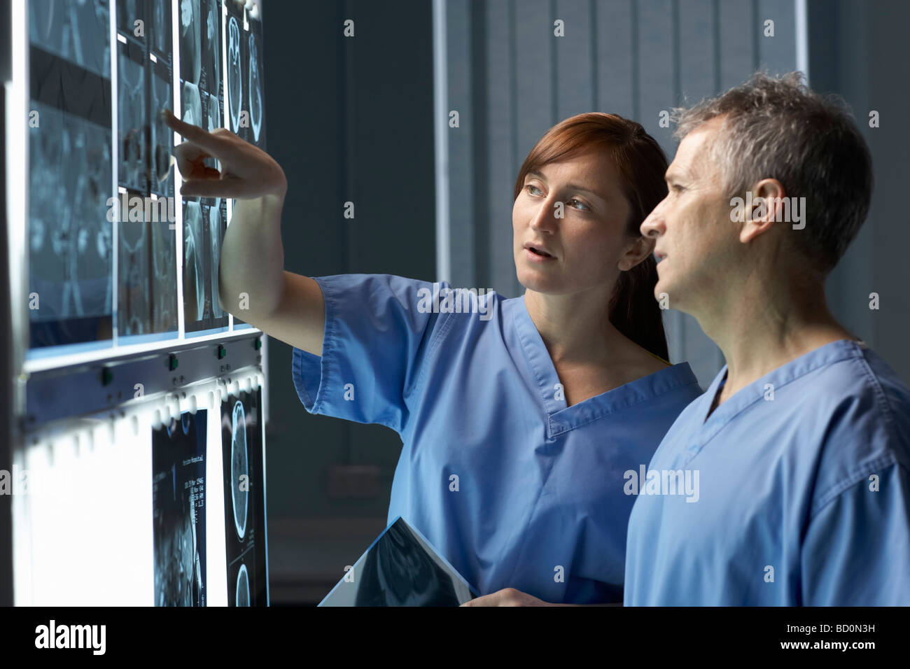 Two doctors looking at x-rays - Stock Image
