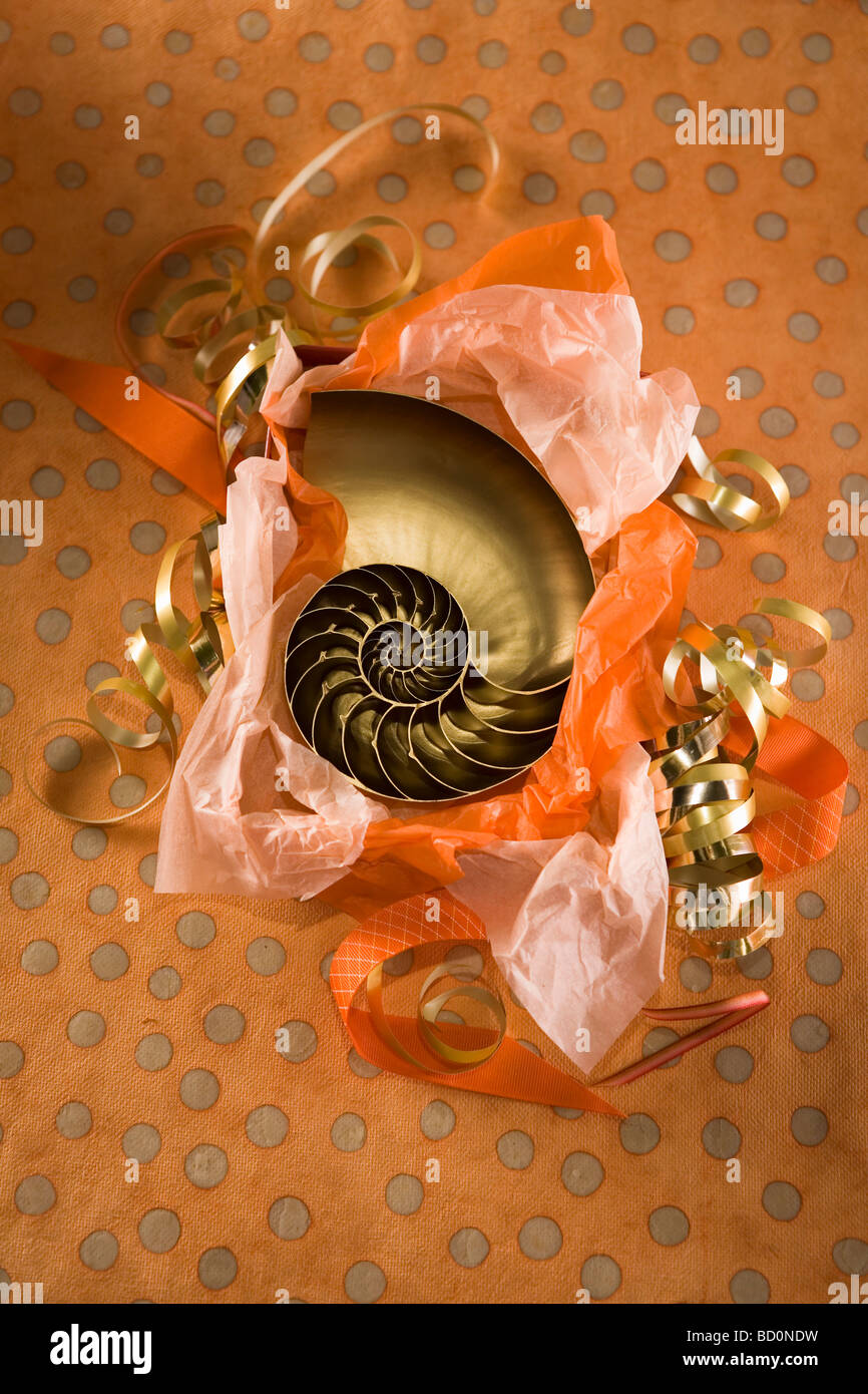 Party gift being unwrapped - Stock Image
