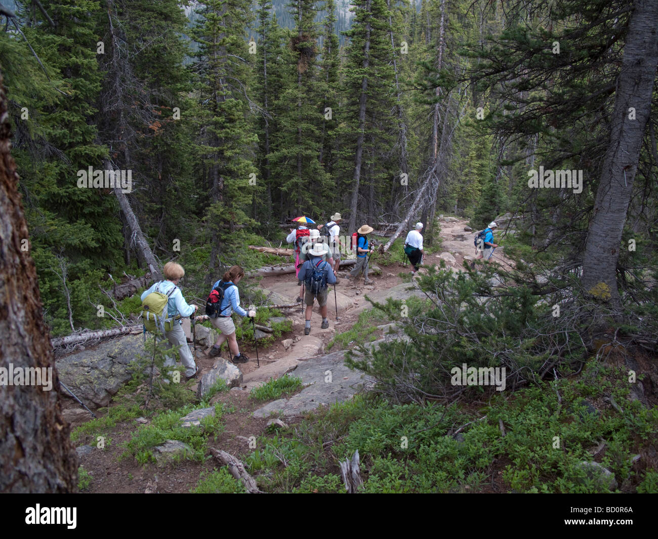 Hikers in Holy Cross Wilderness - Stock Image