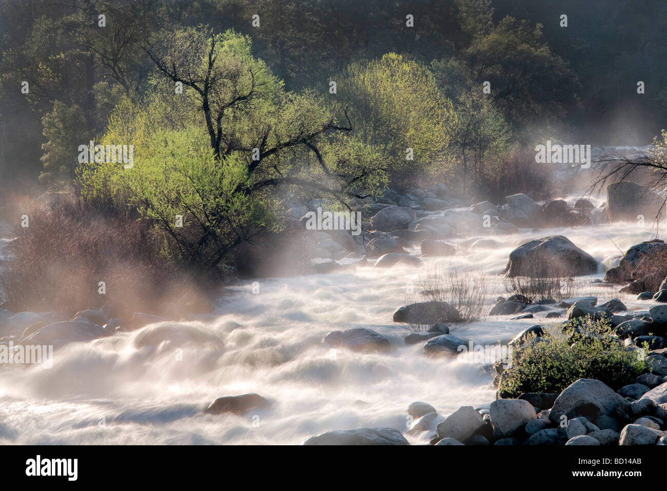 High spring runoff water in Merced River Yosemite National Park California - Stock Image