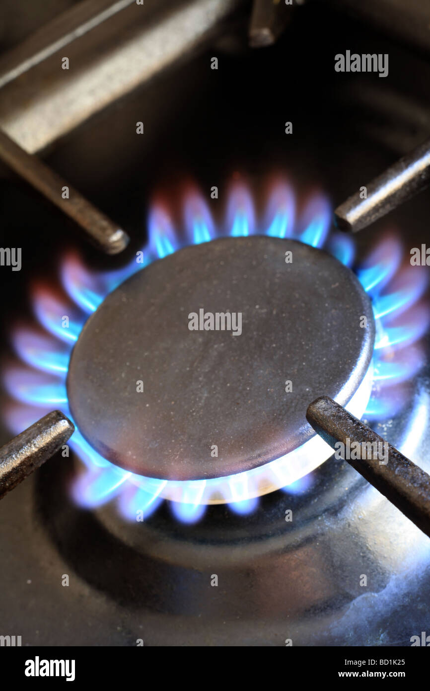 Flames on the ring of a domestic gas cooker - Stock Image