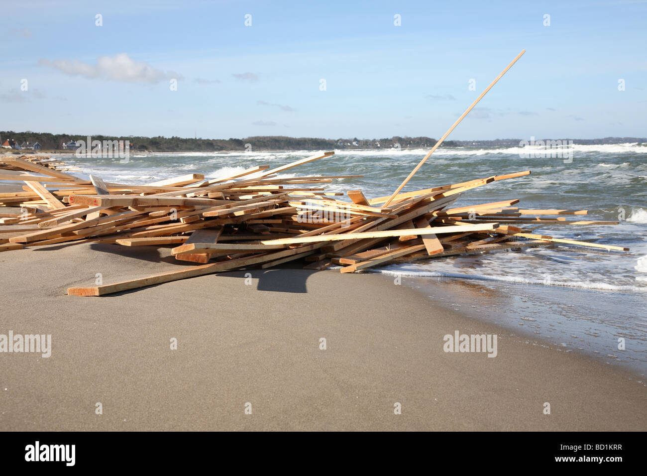 Timber deck cargo washed overboard from a Caribbean cargo vessel in the Kattegat Sea in Denmark and washed ashore Stock Photo
