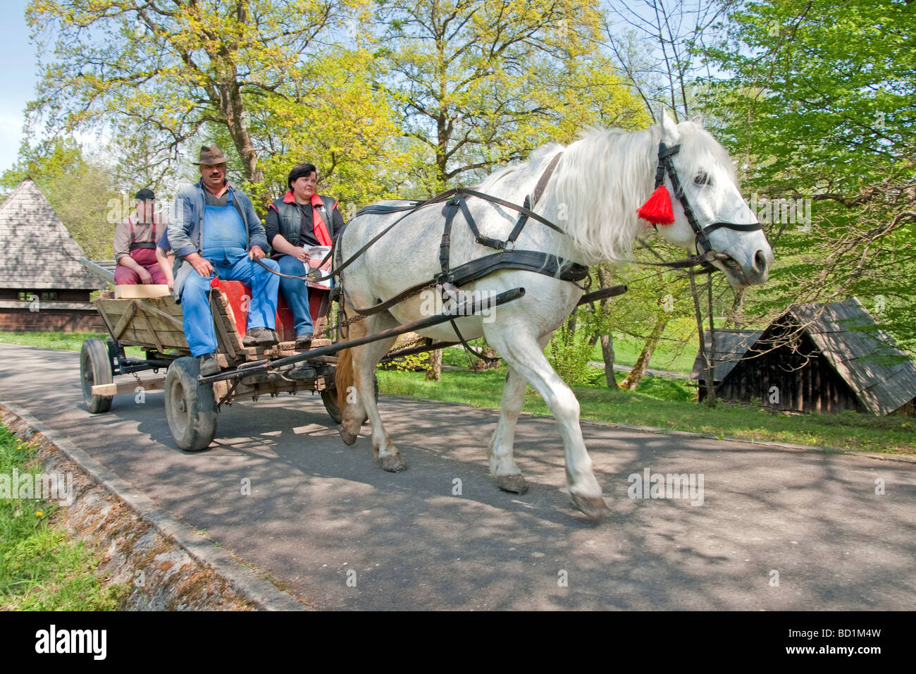 Romania's Museum of Traditional Folk Civilization, traditional transport, at Sibiu in Transylvania - Stock Image