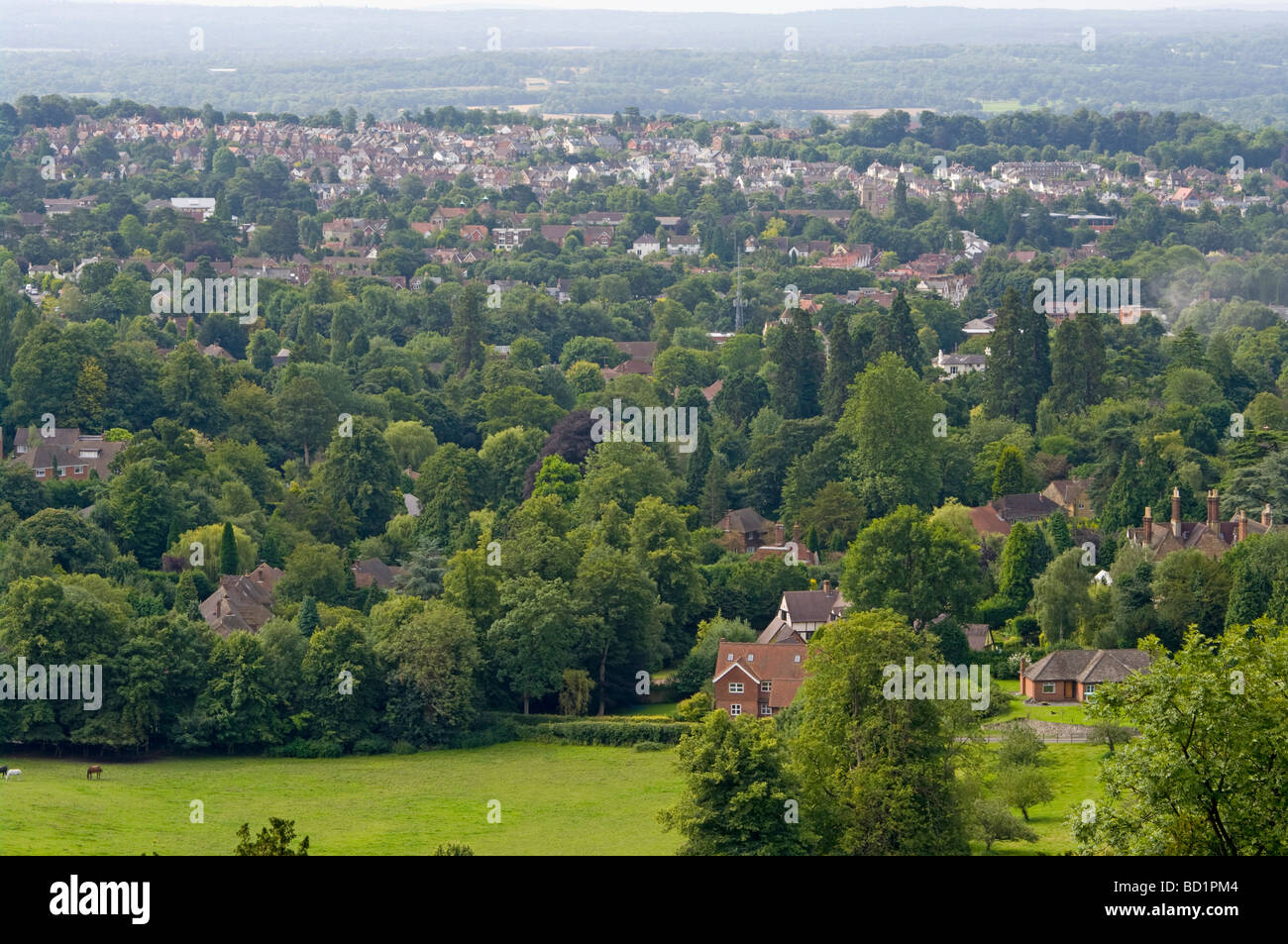 The Town Of Reigate Surrey England As Seen from Reigate Hill - Stock Image