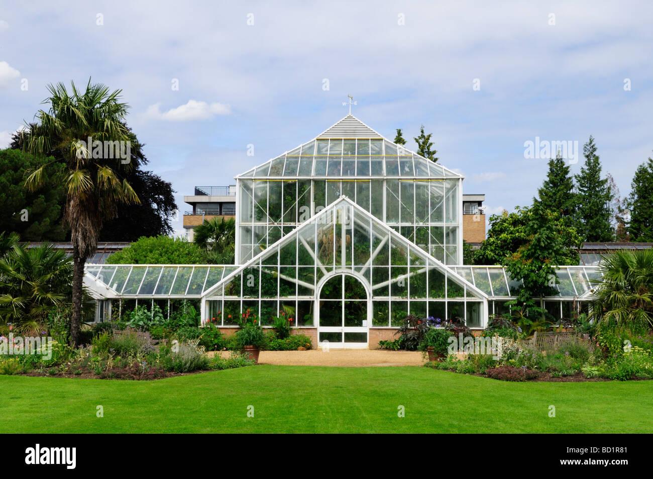Glasshouses at Cambridge University Botanical Gardens Cambridge England UK - Stock Image
