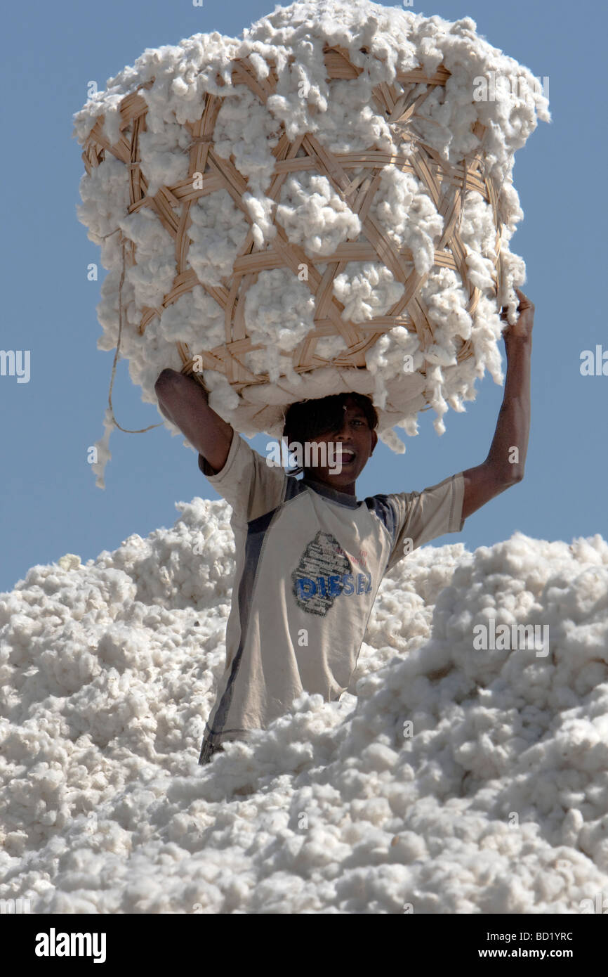 Cotton Shri Dnyaneshwar Ginning Pressing factory Pvt Ltd Kadka Maharashtra India - Stock Image
