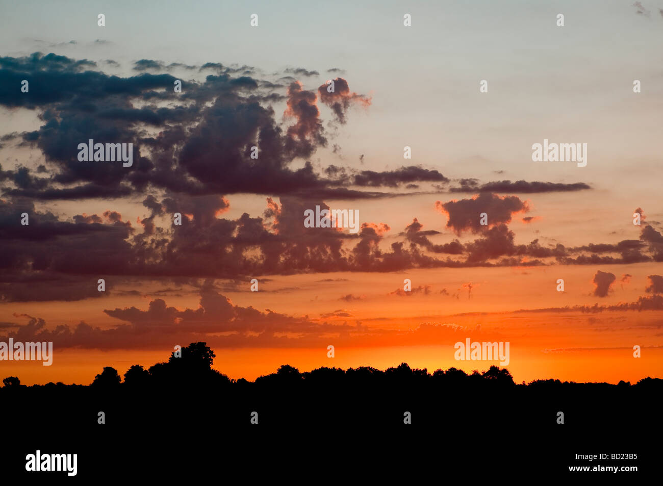 Dawn / sunrise / first light with Cumulus and Altocumulus clouds - Indre-et-Loire, France. - Stock Image