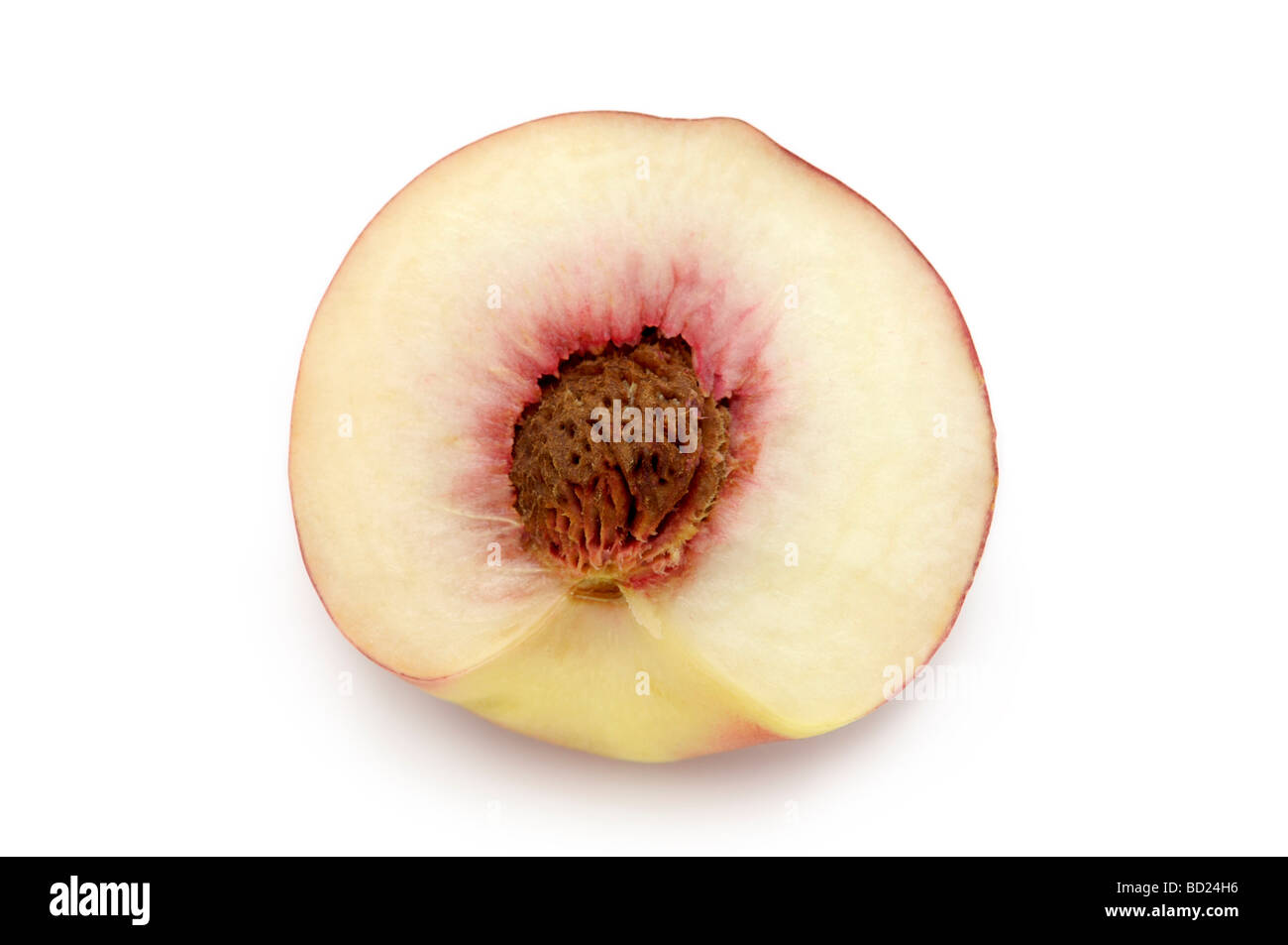 White Peaches, White-fleshed Peach (prunus persica) - Stock Image