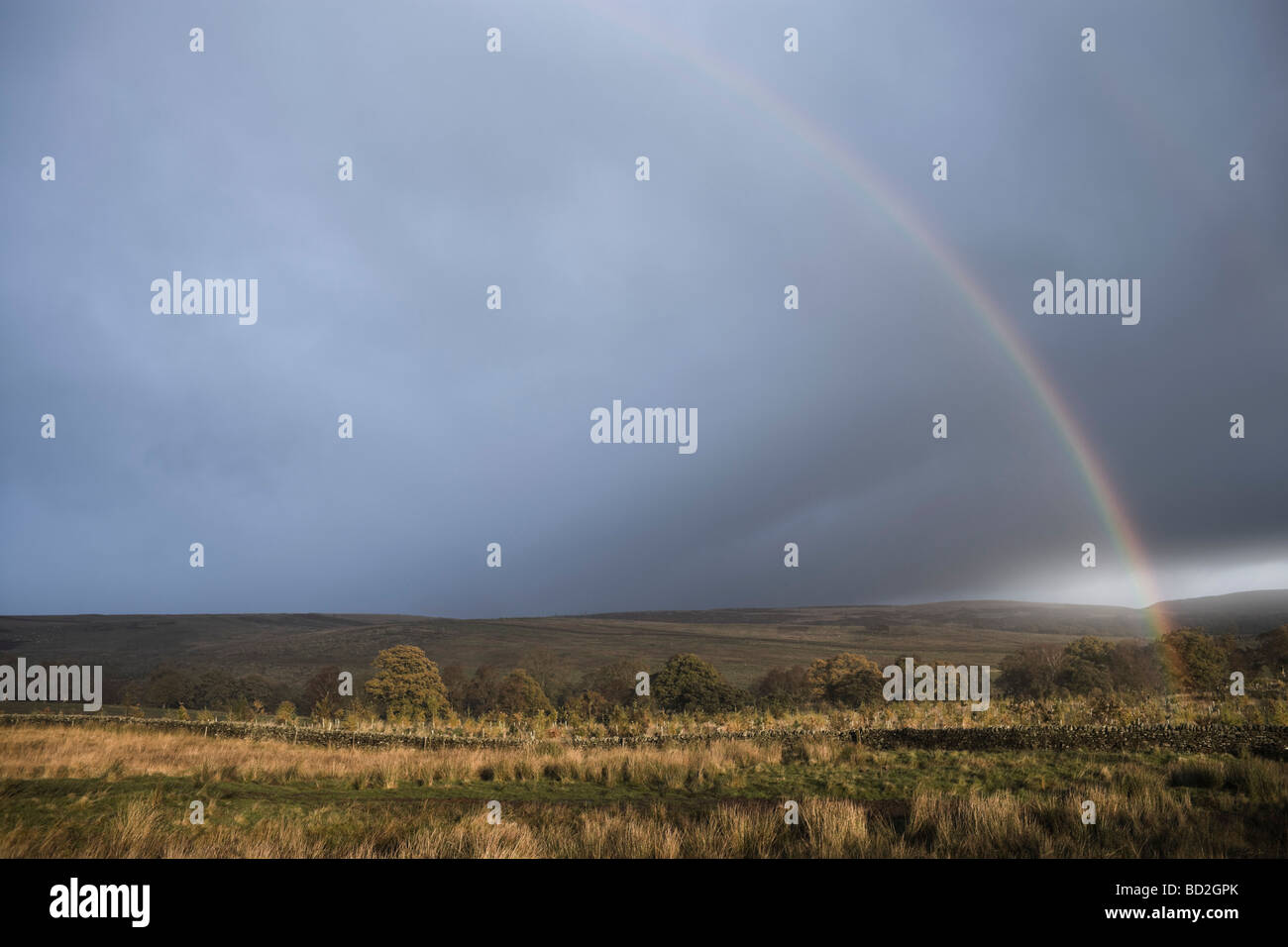 Rainbows end in landscape - Stock Image