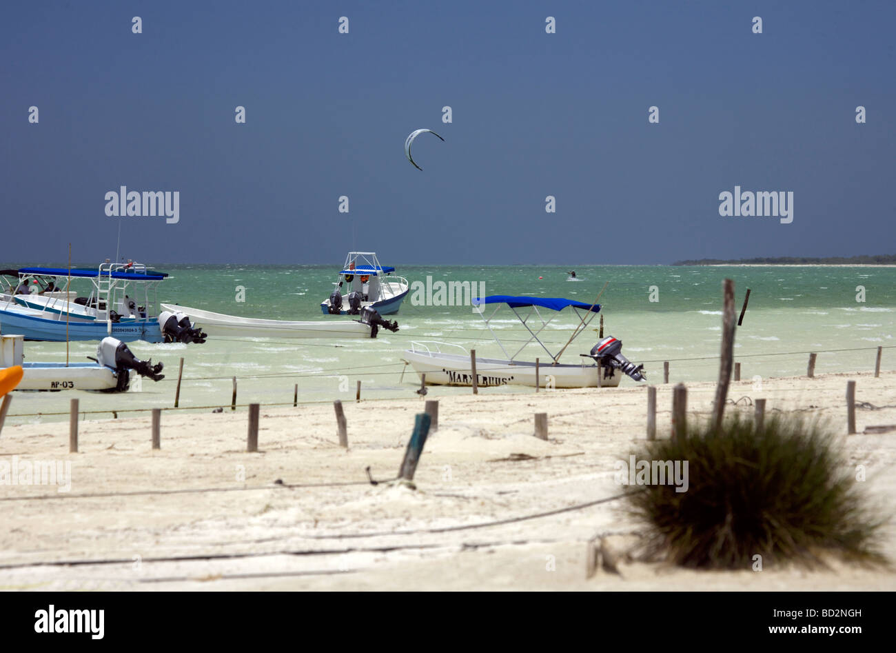 kite surfing on holbox island, quintana roo, yucatán peninsula stock