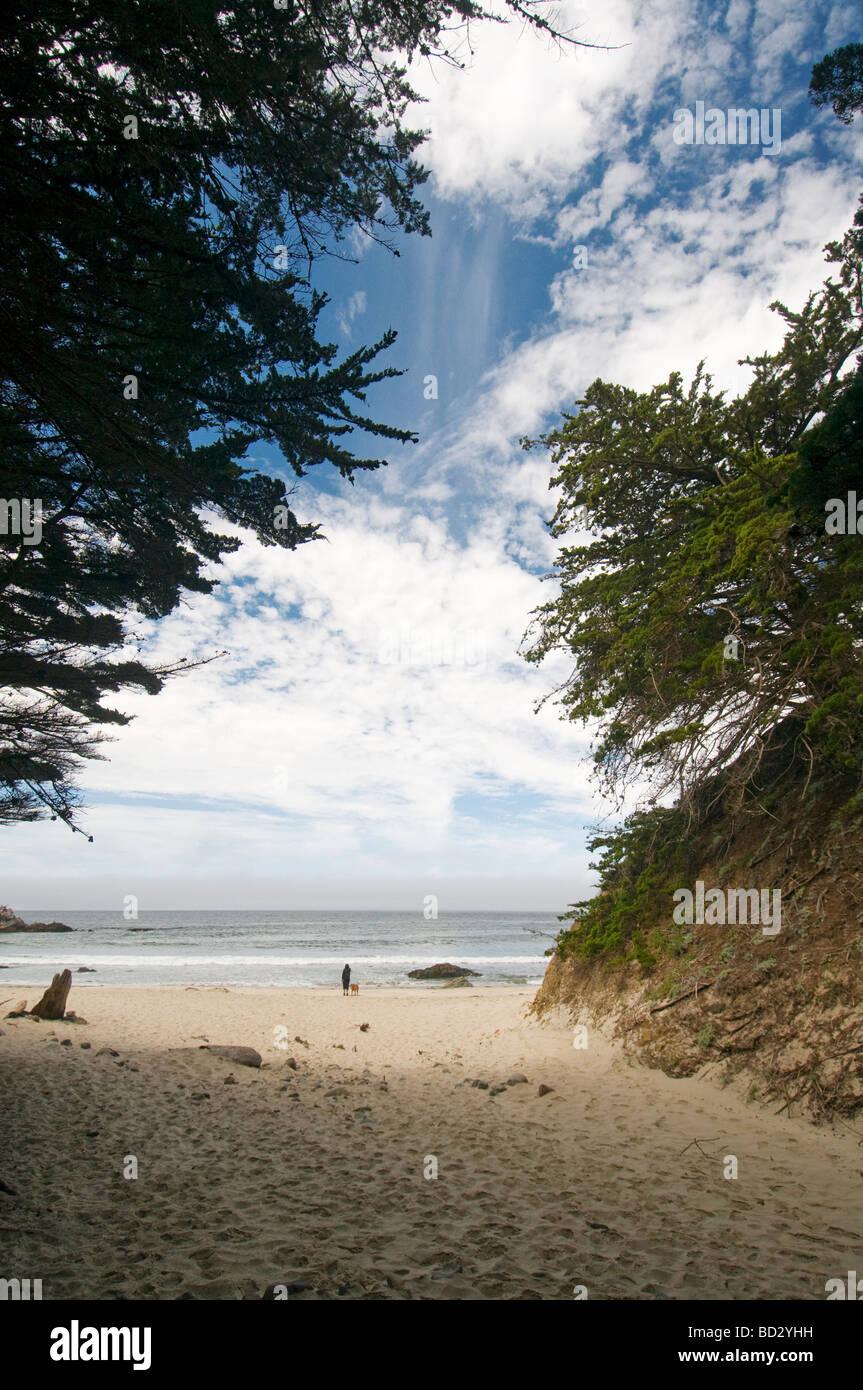 Pfeiffer State Beach Big Sur California - Stock Image
