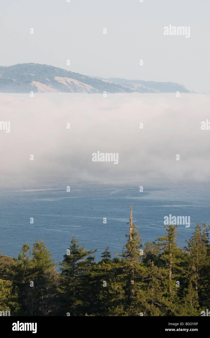overlooking  the fog on Big Sur California coast - Stock Image