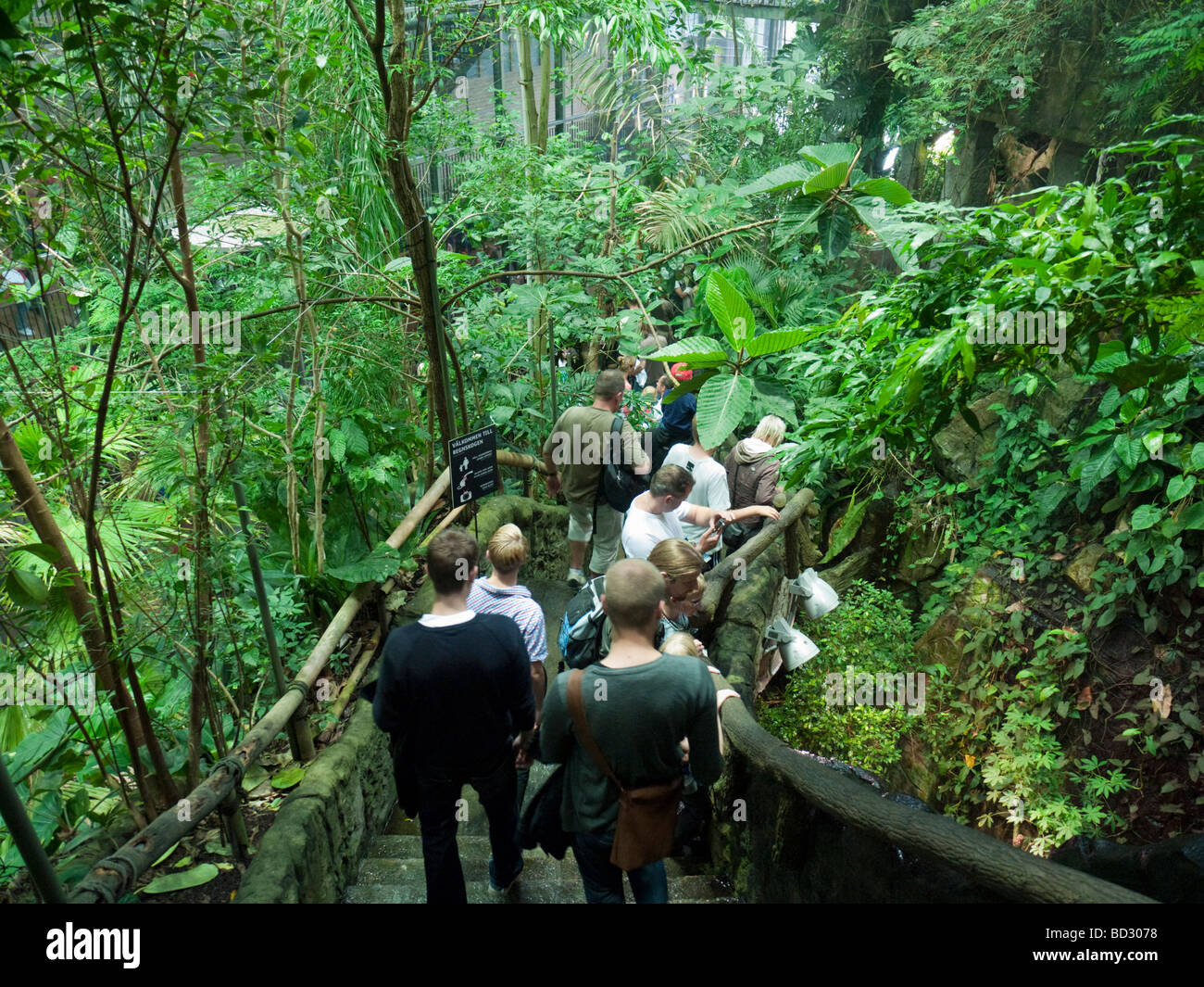 Tropical rainforest at Universeum in Gothenburg in Sweden - Stock Image