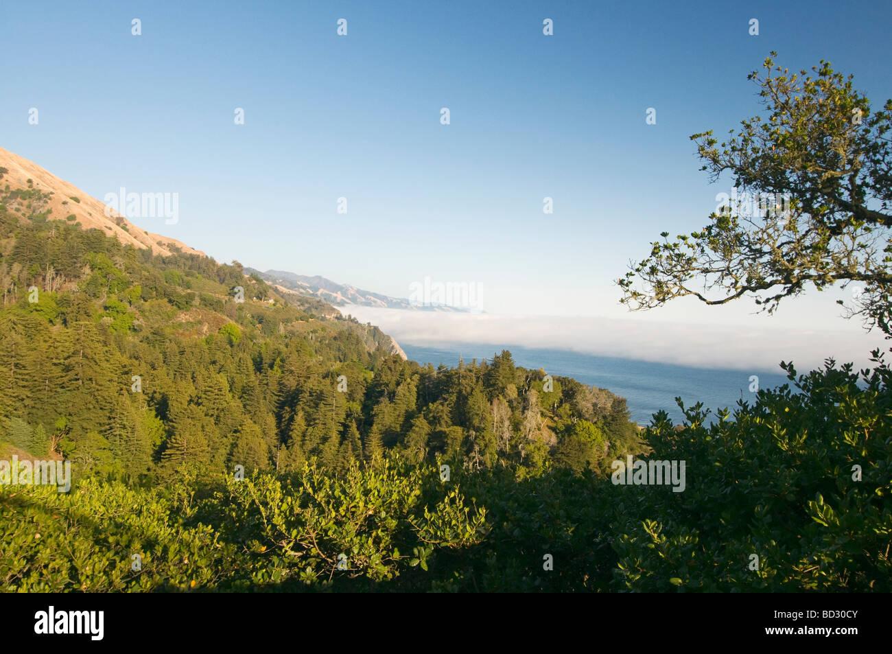 Big Sur California coast with fog - Stock Image