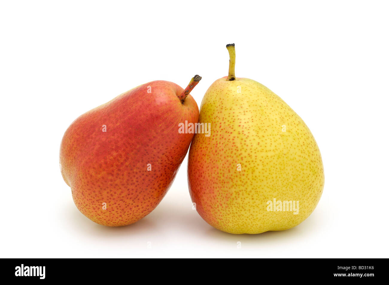 Pair of Forelle Pears - Stock Image