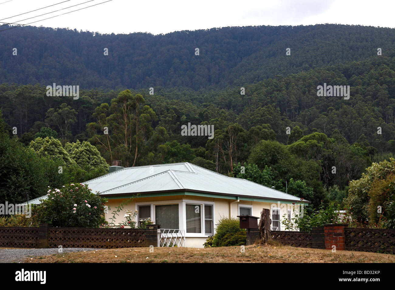 Australian country home built into bushland - Stock Image