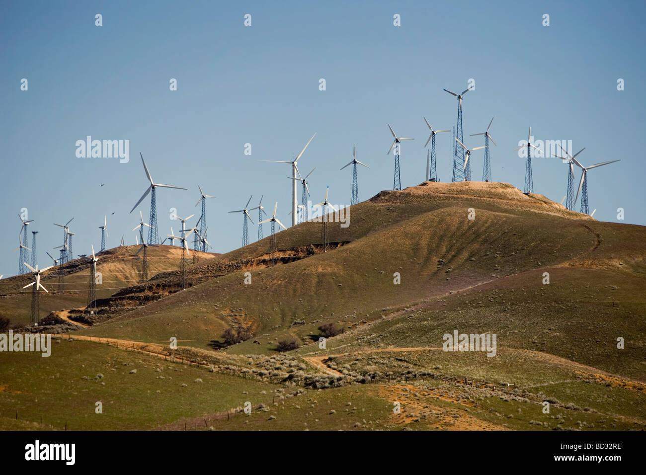 Wind turbines generating electricity Stock Photo