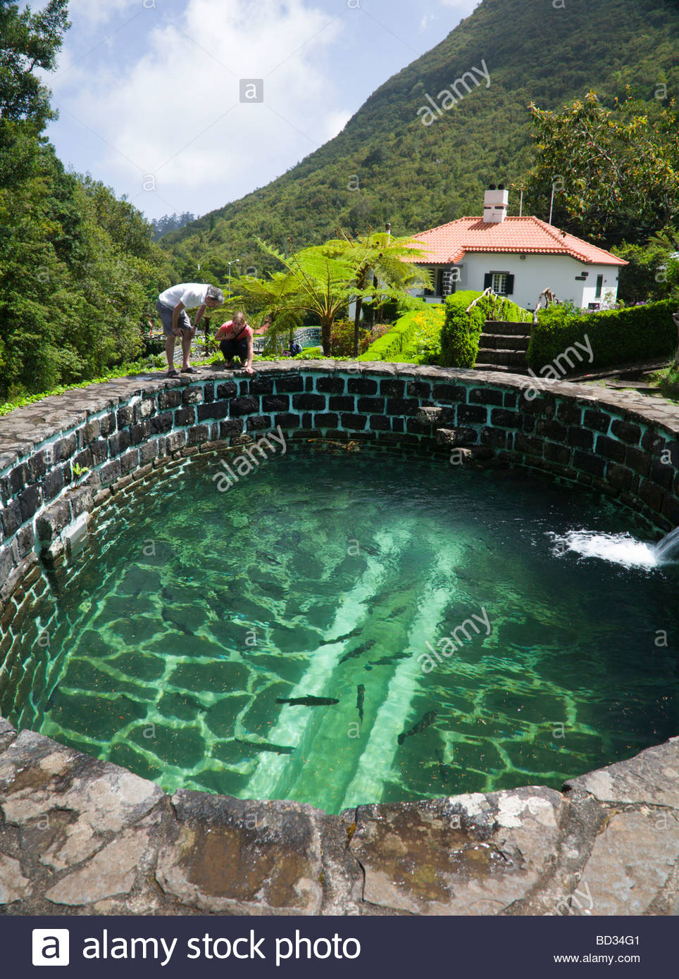 A tourist couple watch trout at the trout farm in Ribeiro Frio, Madeira. - Stock Image