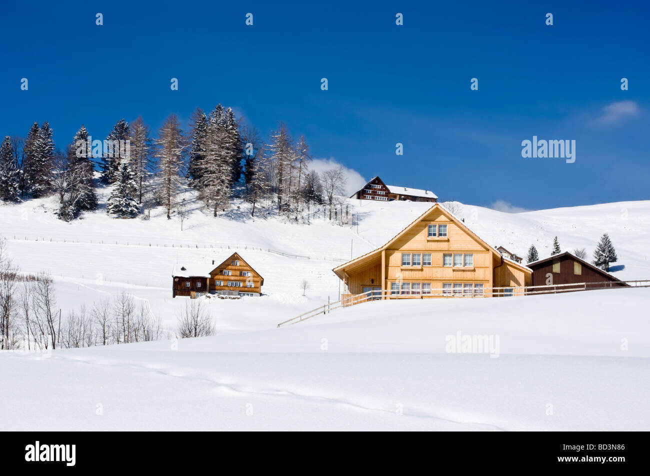 Isolated Houses In Snowy Winter Landscape Near Gais