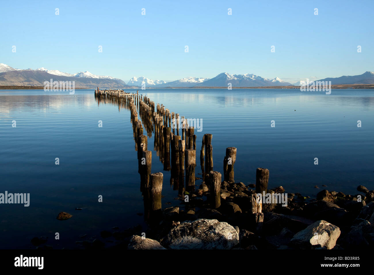 Cormorants Perching on Old Pier in Puerto Natales, Chile - Stock Image