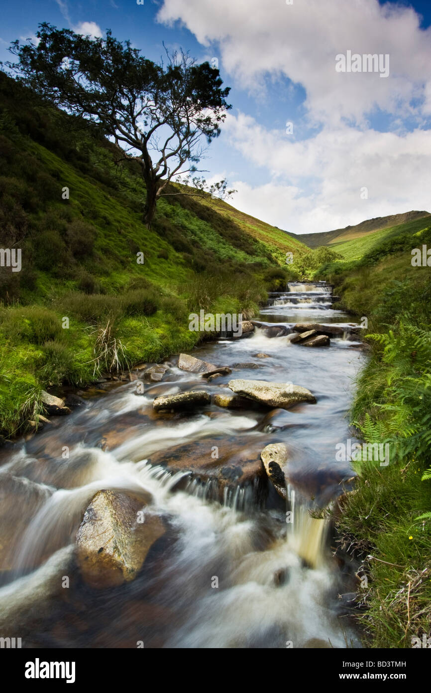 Fairbrook,Kinder,Woodlands Valley,Peak District National Park, Derbyshire, England - Stock Image