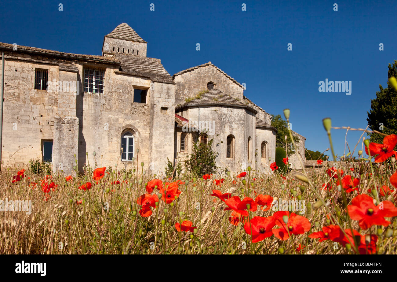 Red Poppies in front of Van Gogh Asylum St. Remy de-Provence France - Stock Image