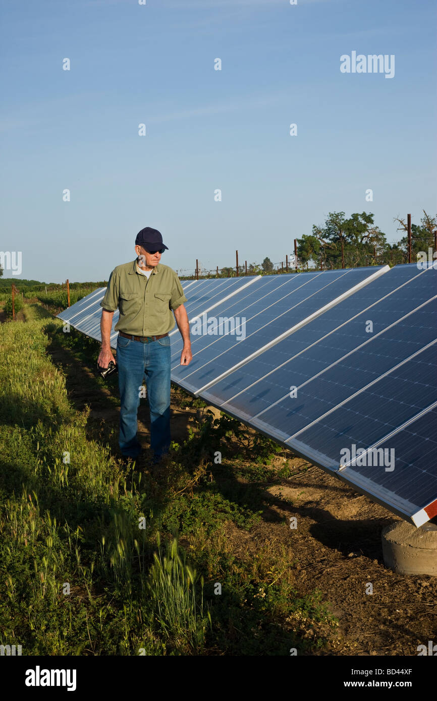 Technician inspecting documenting operating of solar panels. - Stock Image