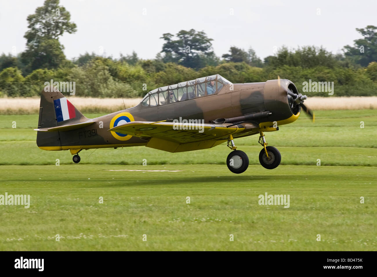 An RAF North American Harvard trainer AT6 Texan - Stock Image