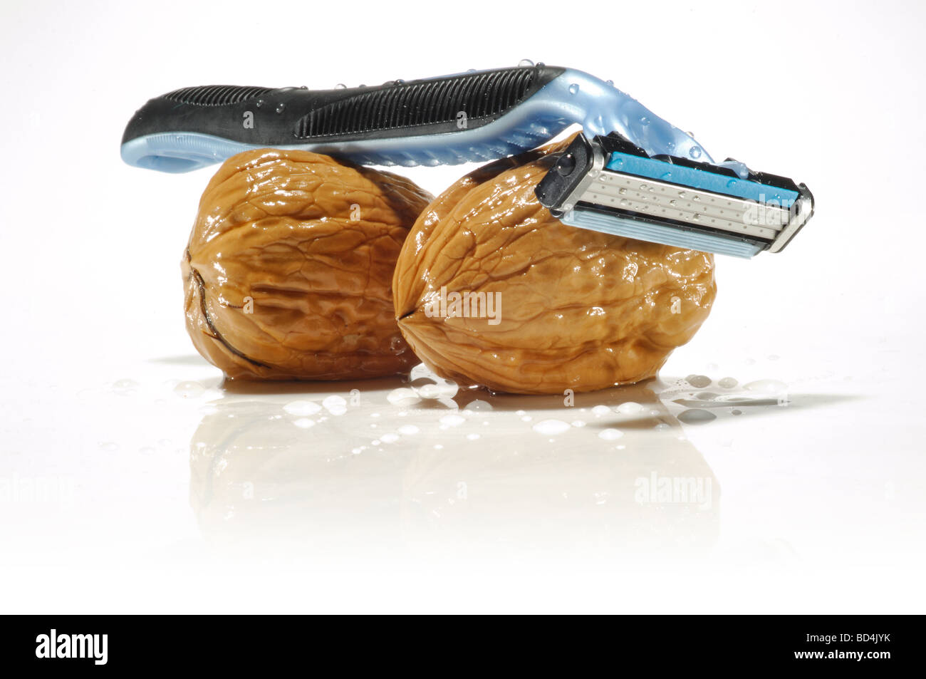 A blue shaving razor balanced on top of two wet walnuts - Stock Image