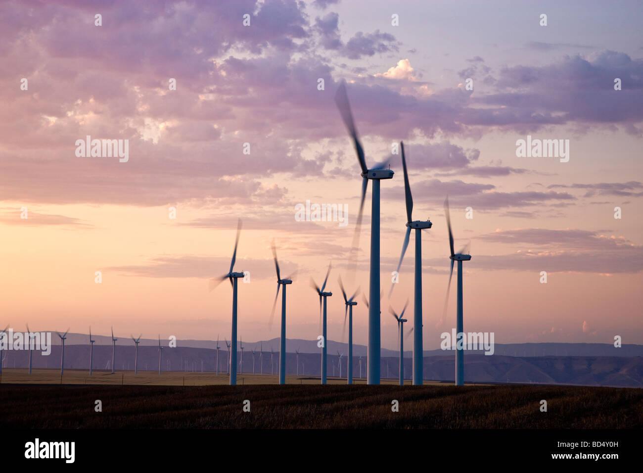Wind farm, turbines, at dusk. - Stock Image