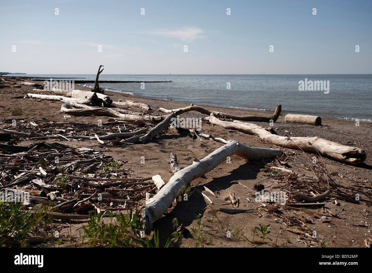 Polluted beach on Lake Erie park Ohio in USA no not people nobody isolated from above top view low angle spoil nature - Stock Image