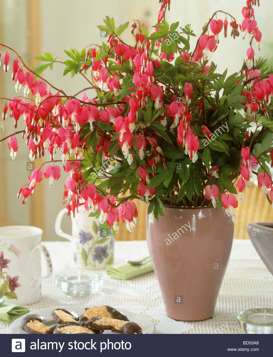 Bleeding heart in vase stock photo 25313296 alamy bleeding heart in vase izmirmasajfo