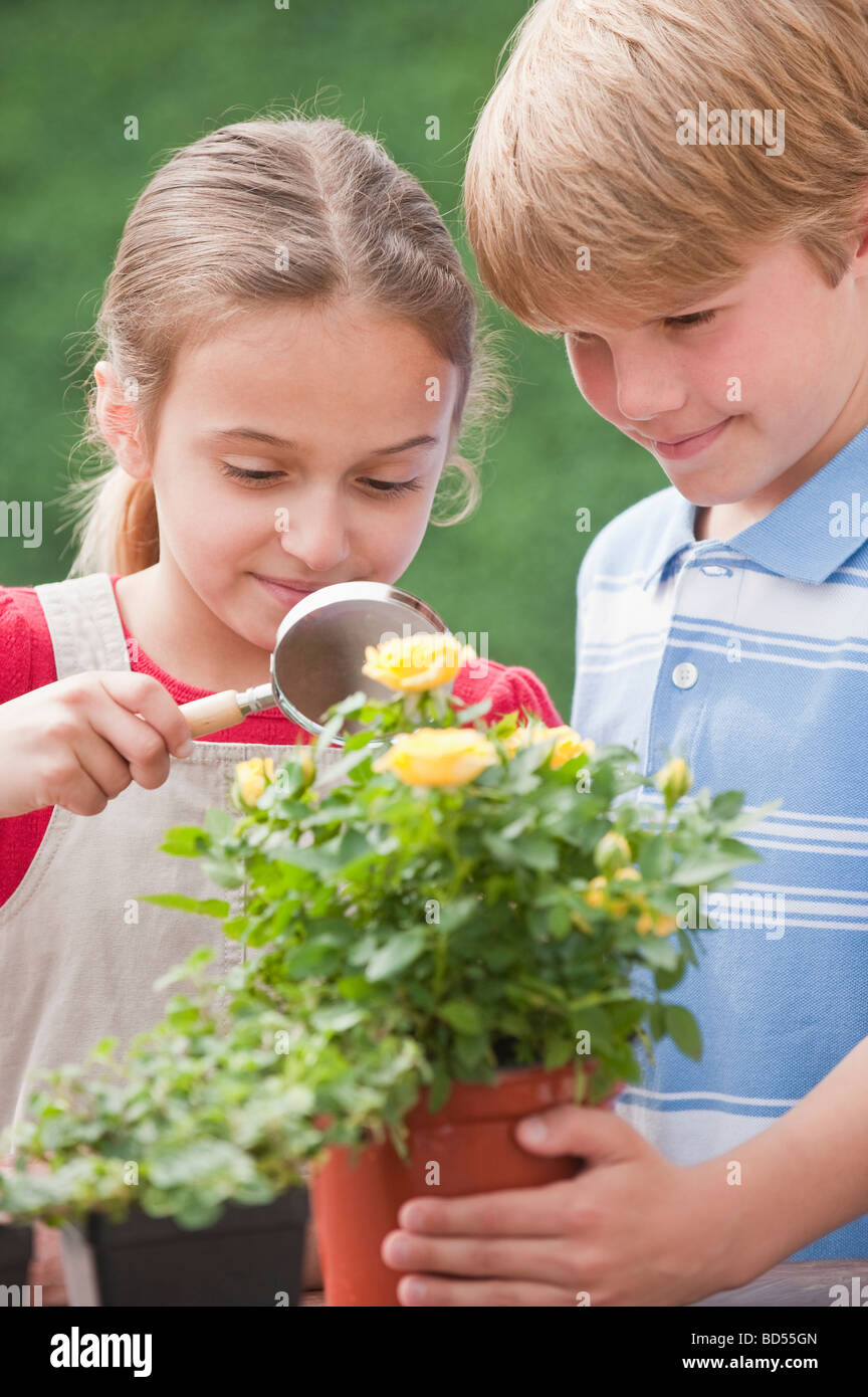 Two young children examining a flower Stock Photo