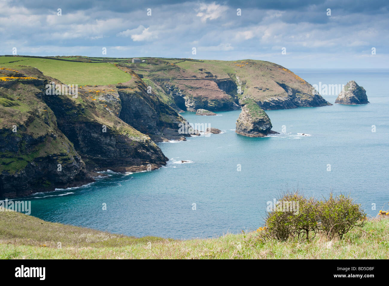 The coastline viewed from Boscastle to Short Island and Grower rock - Stock Image