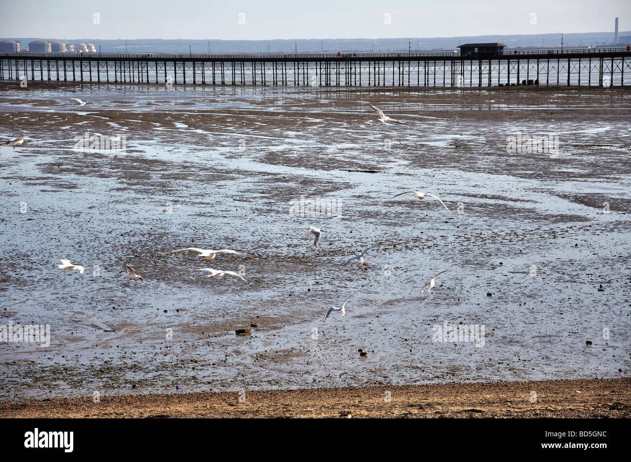Southend Pier, Southend-on-Sea, Essex, England, United Kingdom - Stock Image